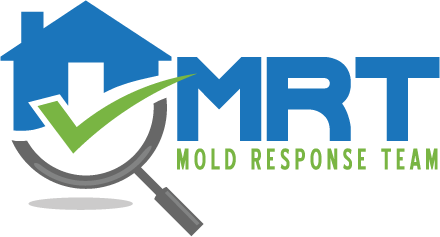 MRT-Logo-web